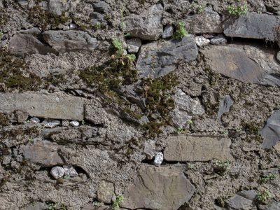 Il chiacchiericcio delle pietre | falía 2018